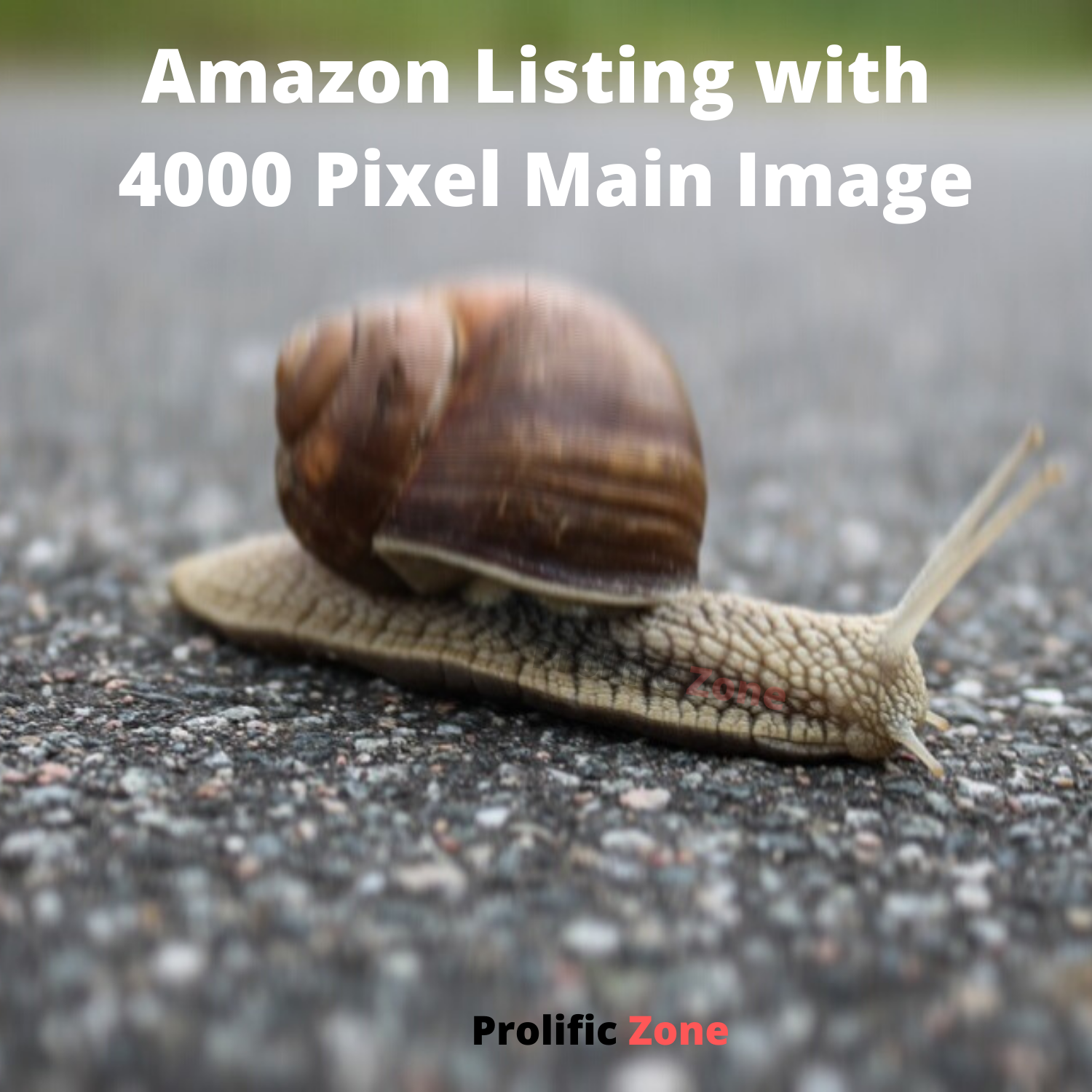Amazon Listing with 4000 Pixel Main Image